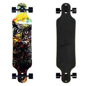 Atom Drop Through Longboard – 40 Inch – Owl 2